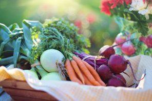 warzywne lekarstwo za darmo